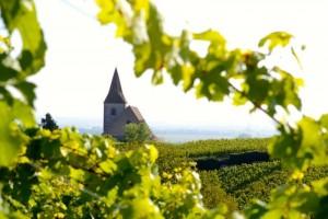 L'église d'Hunawihr et son vignoble